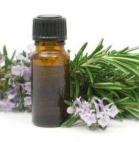 【Rosemary Extract Antioxidant】10g