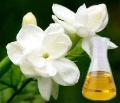 Organic Jasmine Sambac Massage Oil (100ml)